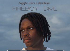 Fireboy Dml – Feel MUSIC