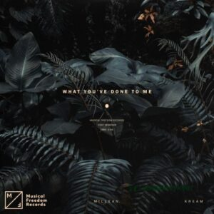 KREAM & Millean – What You've Done To Me ft. Bemendé